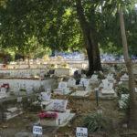 Le cimetière du zoo de Lisbonne